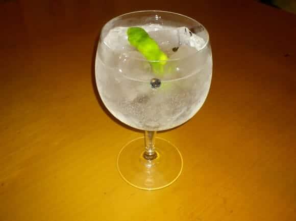gin tonic