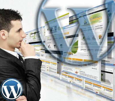usar WordPress